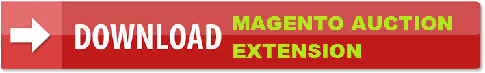 Download Magento auction extension
