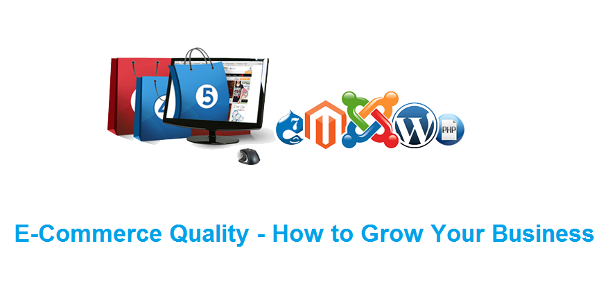 Ecommerce Quality – How to grow your business?